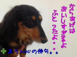 6qziakzllzjxzj4_2
