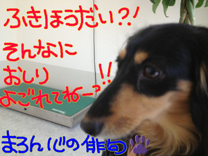 Img_3602_2
