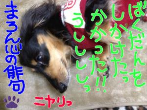 Img_4111_r