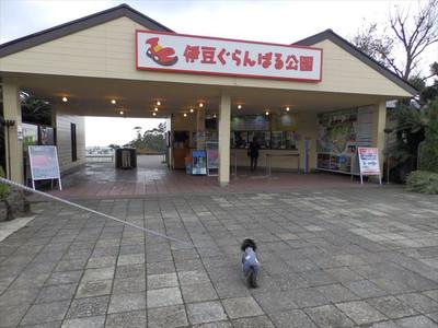 20151119_46_r