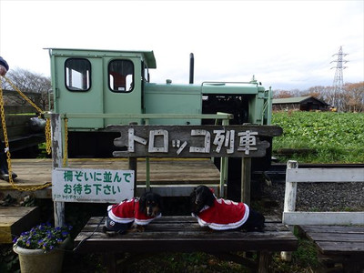 20151217_210_r